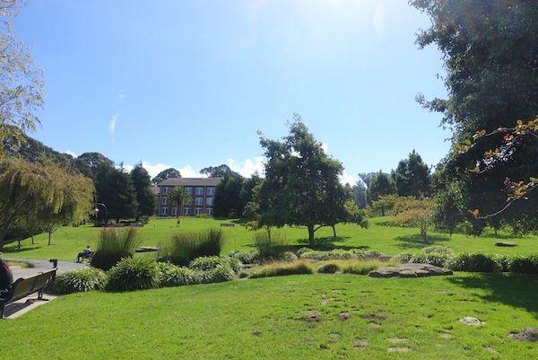 Presidio Park garden