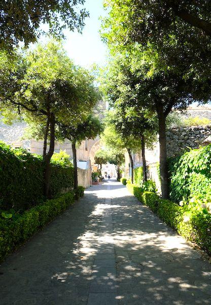 Green quiet street
