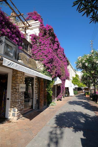 Luxury shopping street