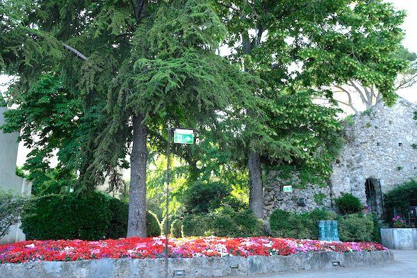 flowery garden in Villa Ruffollo