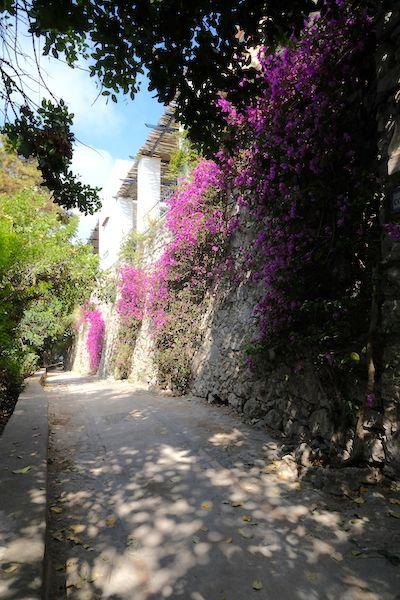 Shaded street Via Tragara
